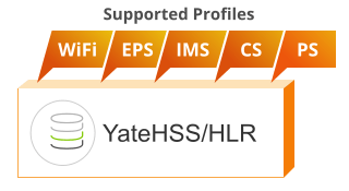 mvno_yhss-hlr_profiles.png