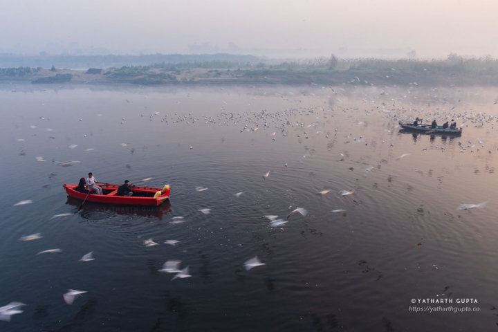 Boats in the yamuna river and a circular formation of seagulls on top.