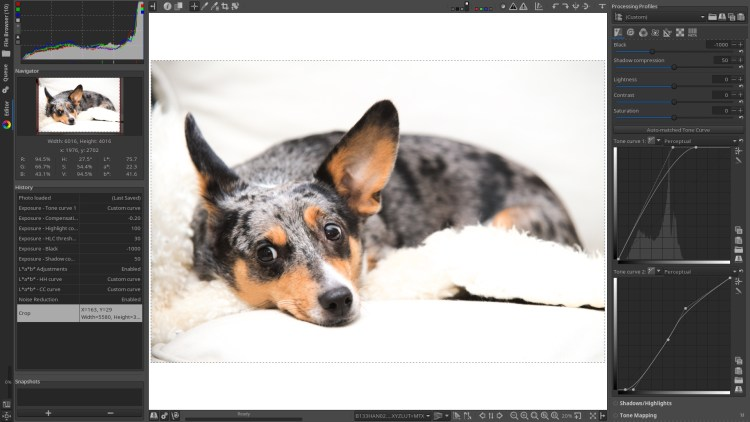 Best Free Alternatives to Photoshop and Lightroom - Yatharth Gupta
