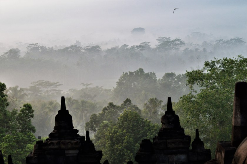 View from the top terrace at dawn