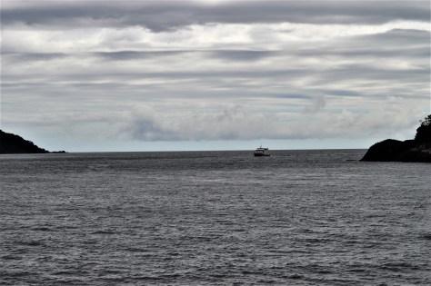 Tasman Sea Entrance to Milford Sound