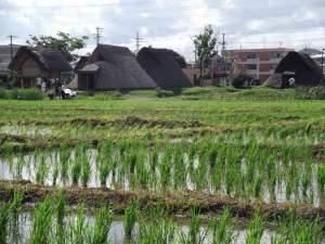日本の有名な遺跡・古墳15箇所《一覧表》