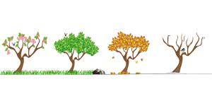 【英語】1月から12月までの表記と読み方と省略形|シンプル英語