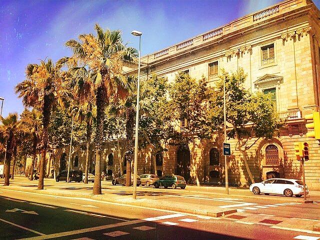 Школа искусств La Lonja в Барселоне