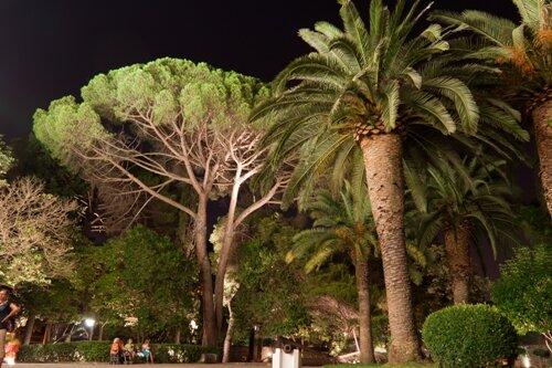 Парк короля Николы