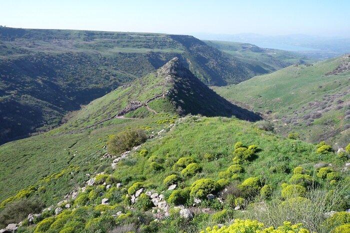 Гамла - гора в форме верблюжьего горба (гамаль - верблюд на иврите)