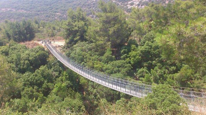 Подвесной мост в Парке города Нешера
