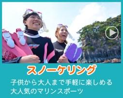 伊豆のスノーケリング