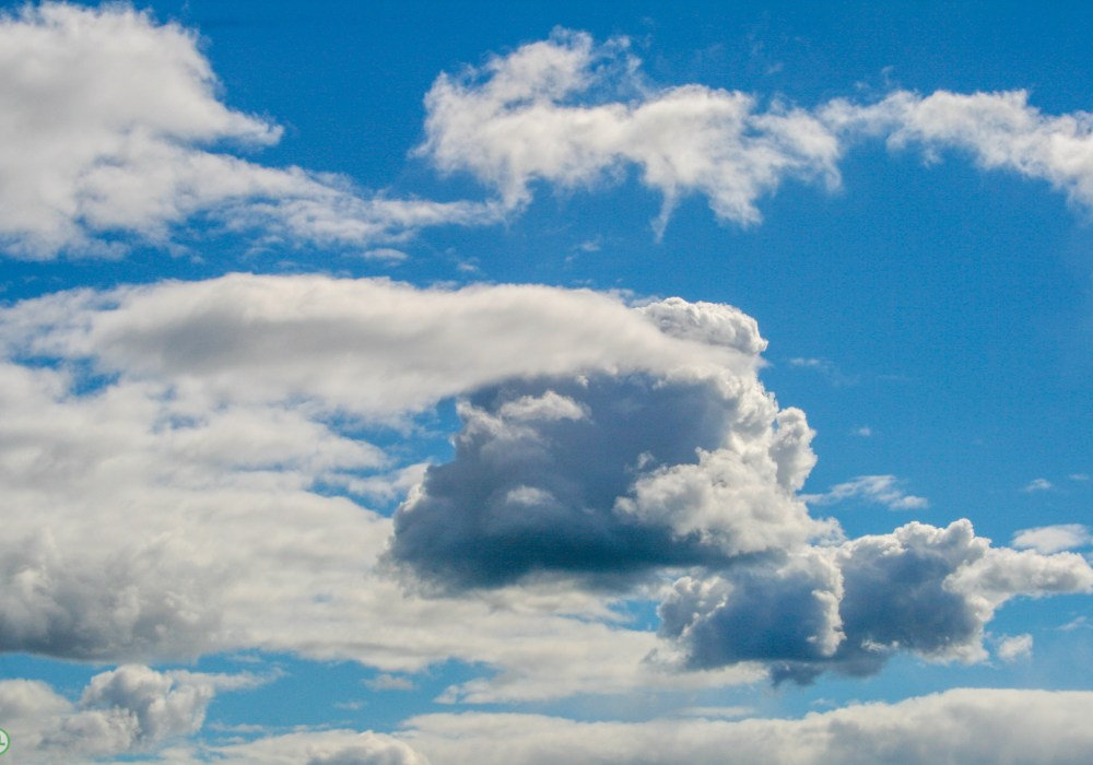 Your backup in the Cloud