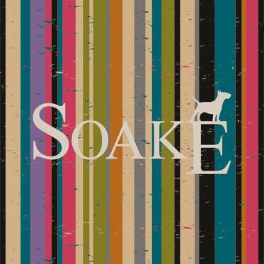 Soake – Black Automatic Folding Compact Umbrella with Matt Hook Handle