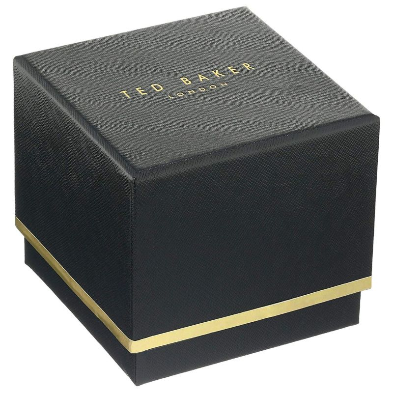Ted Baker – KATE Silver Mesh Strap Watch in Presentation Gift Box