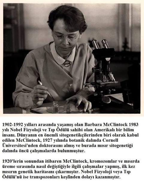 Dünyada -Bilim- Tarihine- Damga -Vurmuş -17 -Bilim- Kadını -Yazı -Atolyesi- (17)