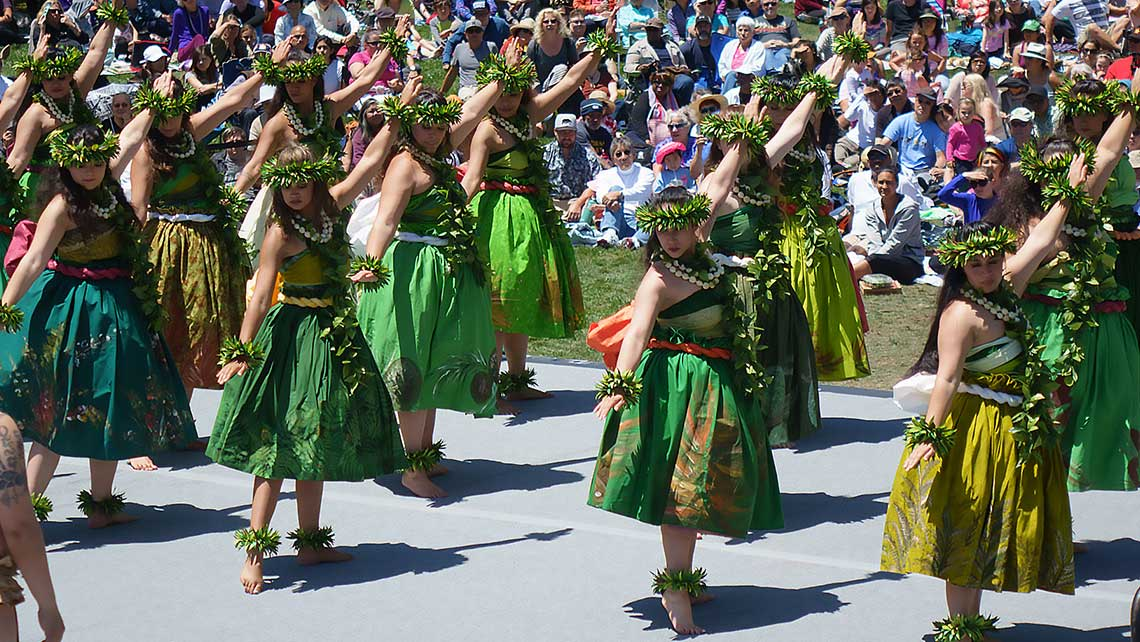 Photo of a large group of hula dancers