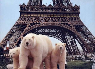 Bearnardo in Paris with snot-nosed little cubbies