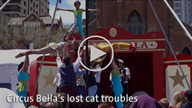 Video Link: Circus Bella's lost cat troubles