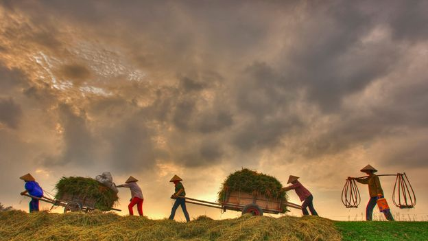 Nam Dinh is a traditionally agricultural region located south of the fertile Red River Delta (Credit: Credit: Vietnam's Peoples and Landscapes/Getty Images)