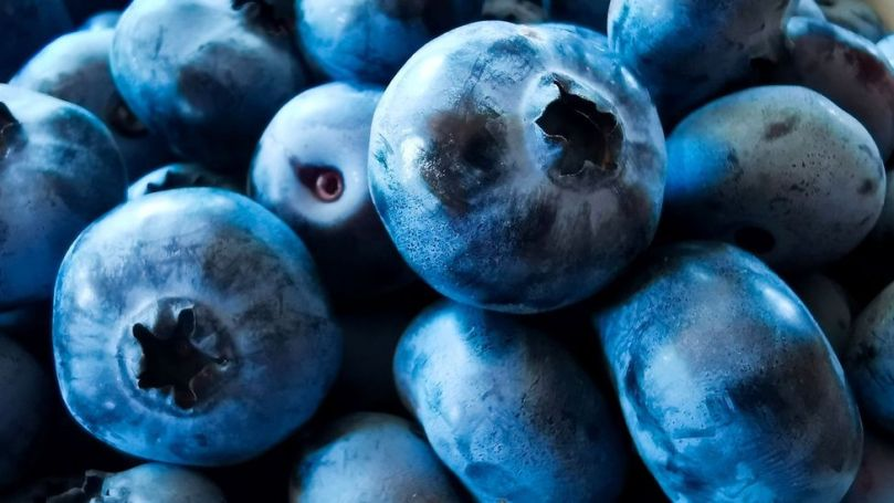 Blueberries contain anthocyanin, which has been linked to lowering the risk of heart disease (Credit: Beata Zawrzel/Getty Images)