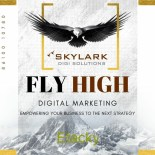Skylark Digi Solutions | Web Development and Digital Marketing Services