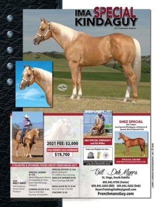 Wicked Chicks Debt In Foal to Ima Special Kinda