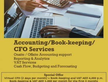 CFO, Accounting & VAT Services