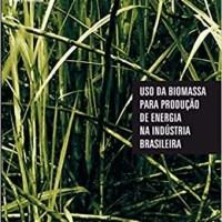 Uso da Biomassa para Produção de Energia na Indústria Brasileira