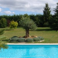 Superb villa with pool close to Dijon