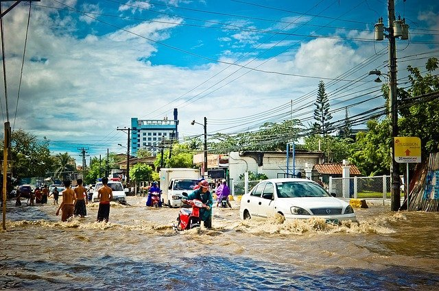 Heavy rains and floods in southern Thailand have killed 24 people.