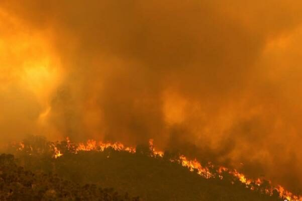 Six forest fires in southwest Australia are suspected of artificially igniting. Heavy rain helps to alleviate the fire.