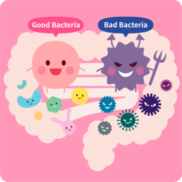 Biofit Supplement
