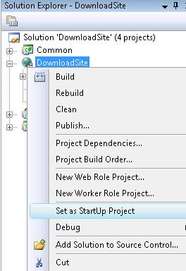 Set As Startup Project