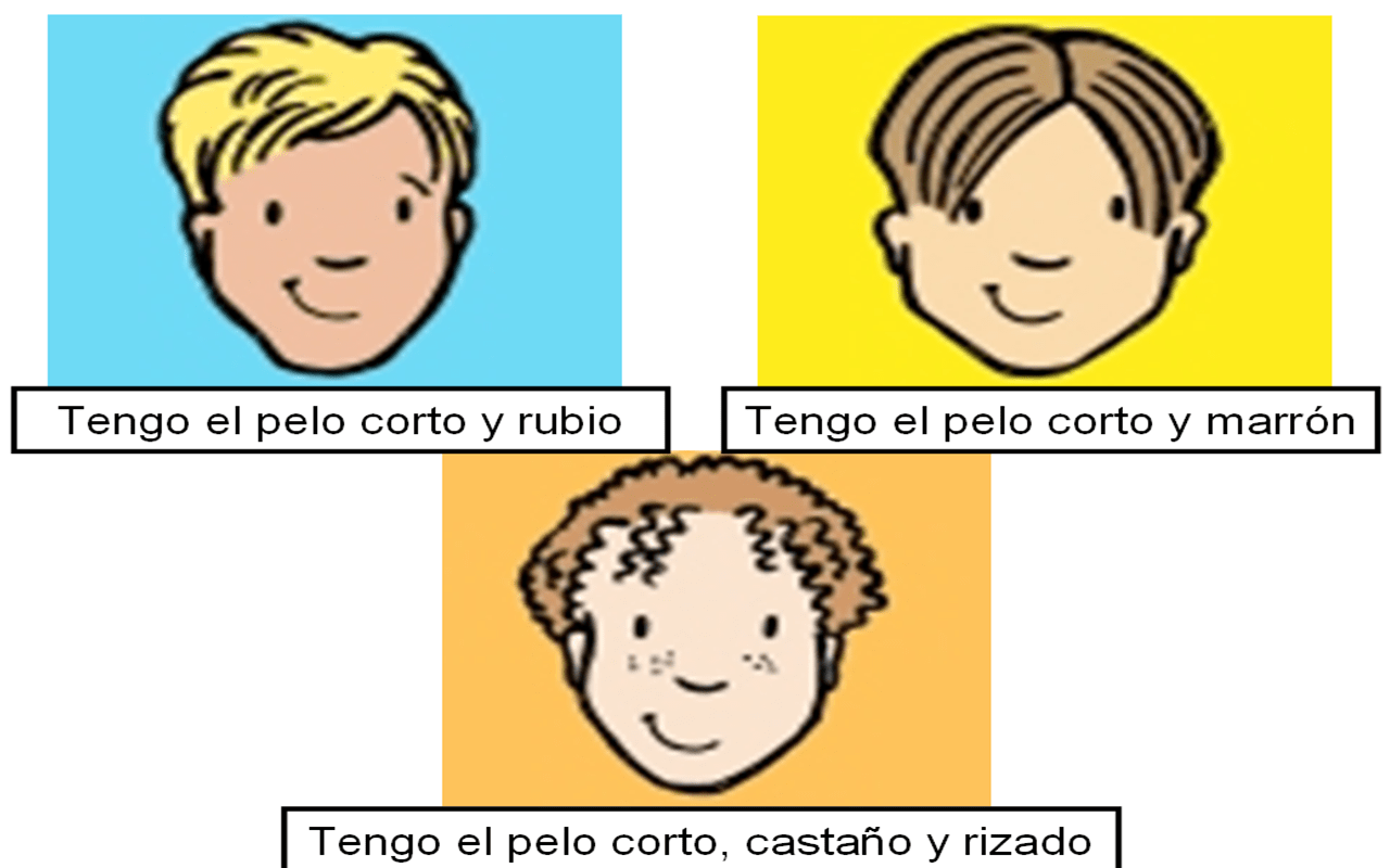 Los Ojos Y El Pelo Eyes And Hair Vocabulario Test On