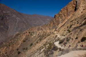 Colca-Canyon-28