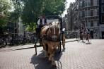Amsterdam_Blog-39