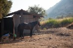 GB13_India_Udaipur_Blog-32