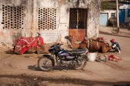 GB13_India_Udaipur_Blog-36