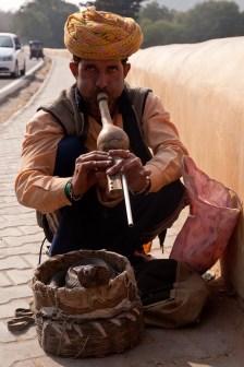 Jaipur-39