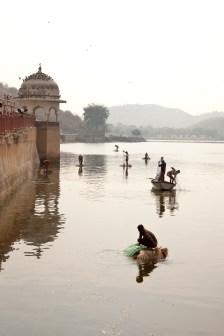 Jaipur-64