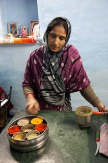 Udaipur-8