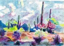Desert 8x11 / 1992