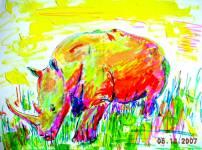 Rhino 2007