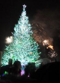 HakodateChristmasTreeLight-fireworks
