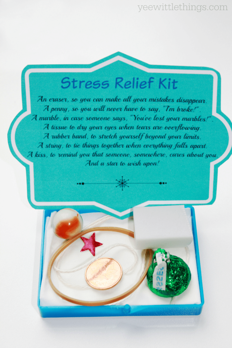 Diy Stress Relief Kit Yee Wittle Things