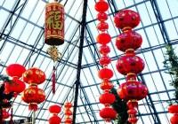 Lunar New Year & Fireworks At Muttart Conservatory