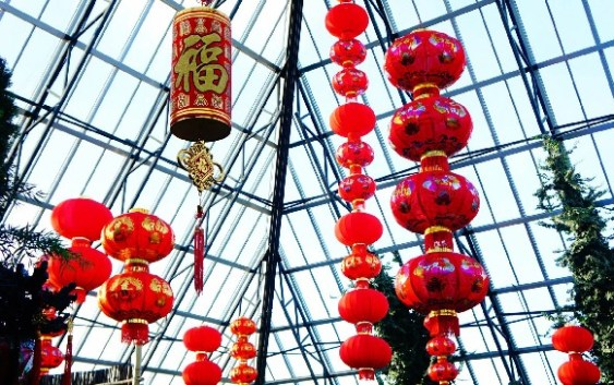 Lunar New Year & Fireworks At Muttart Conservatory