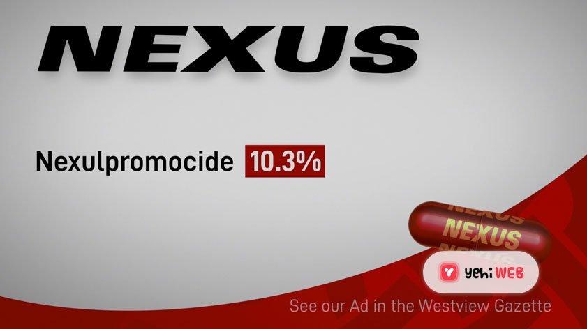 Nexus Marvel Studio Yehweb