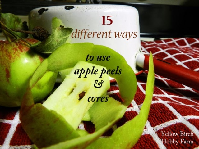15 Different Ways to Use Apple Peels and Cores