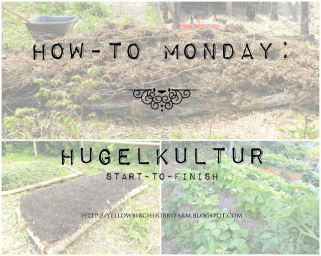 Yellow Birch Hobby Farm: Hugelkultur How-To
