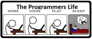 The Programmers Life