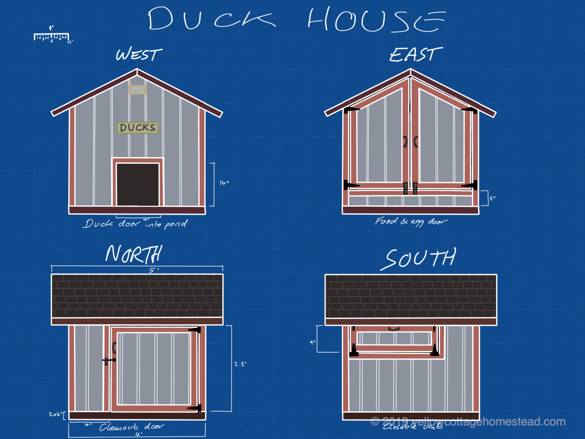 Duck house elevations