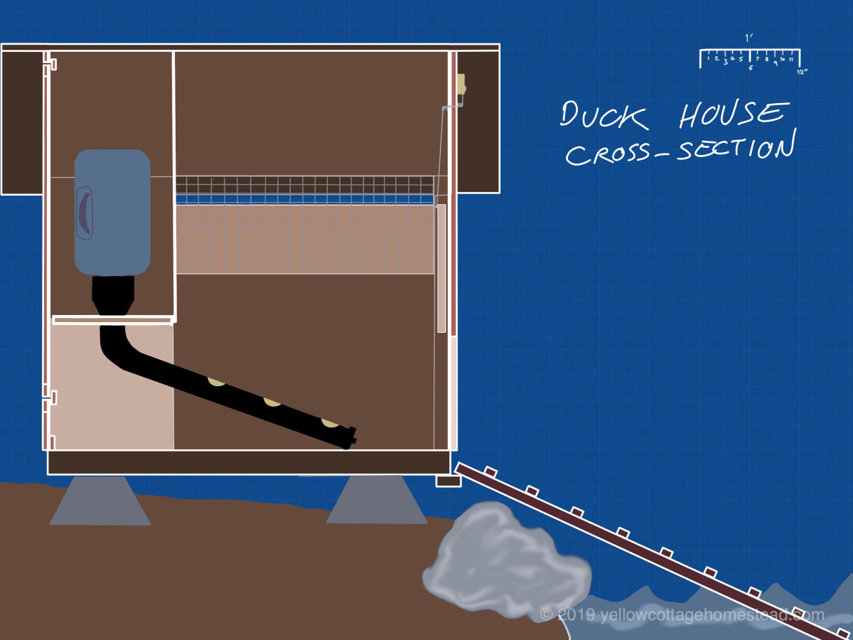 Duck house cross-section